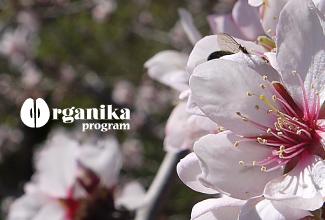 Organika program